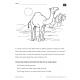 Improving Reading Fluency & Comprehension - Grades 2-3 (eBook)