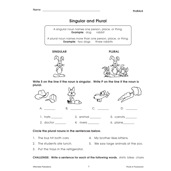 Plurals & Possessives: Skill Booster Series (eBook)