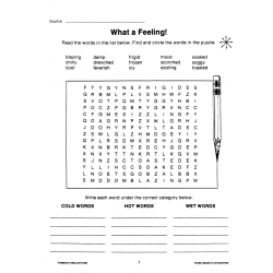 Categories & Critical Thinking: Word Search Puzzles (eBook)