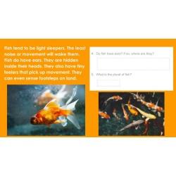 HIGH INTEREST READING BUNDLE Wonder Stories Lvl 2 Google SLIDES