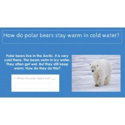 HIGH INTEREST READING Wonder Stories Lvl 1.2 Google Slides Distance Learning